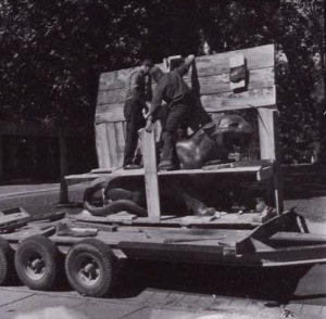 Transporting tigers to installation site