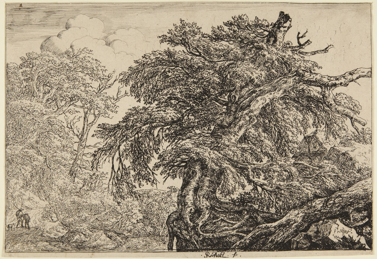 Jacob van Ruisdael (Dutch, 1628–1682), Two Farmers with Their Dog, ca. 1660. Etching, sheet trimmed to plate. Gift of Junius S. Morgan, Class of 1888