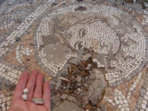 Photograph showing the pre-removal of the mosaic from the threshold of Architecture Laboratory