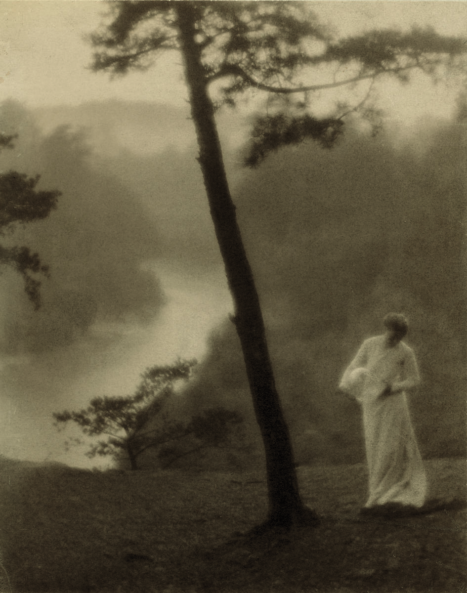 Clarence H. White (American, 1871–1925), Morning, 1905, printed after 1917. Gum bichromate on palladium print. Library of Congress, Prints & Photographs Division. Purchase, 1926