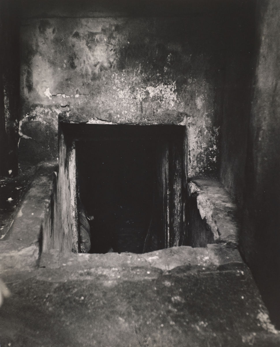 Roman Vishniac (American, born Russia, 1897–1990), Entrance to the basement dwelling where twenty-six families lived, Warsaw, ca. 1935–38, printed ca. 1945–55. Gelatin silver print. Gift of Mara Vishniac Kohn. © Mara Vishniac Kohn, courtesy International Center of Photography