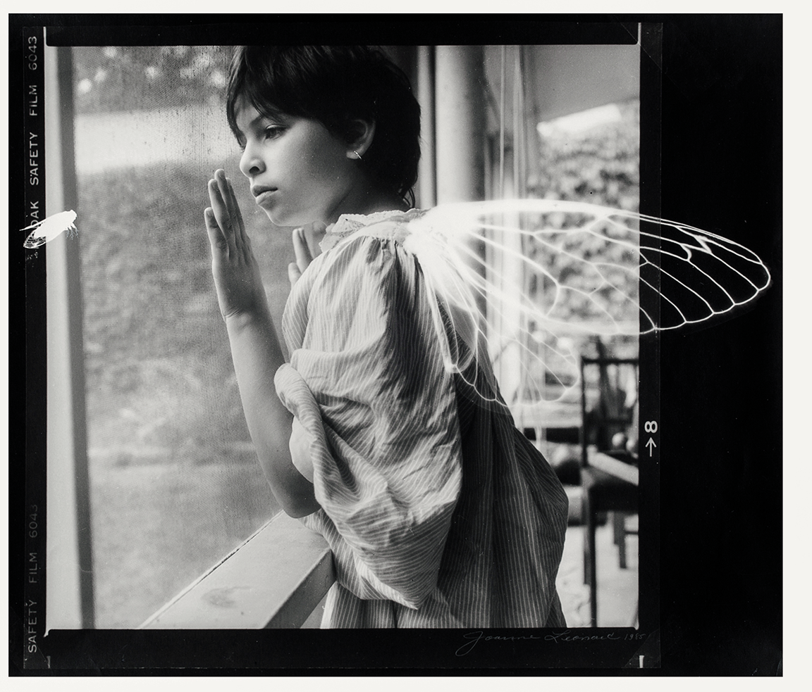 Joanne Leonard (born 1940, Los Angeles; active Ann Arbor, Michigan), Winged ones (Julia with Cicada wings), 1985. Gelatin silver print. Princeton University Art Museum. Gift of the artist. © Joanne Leonard