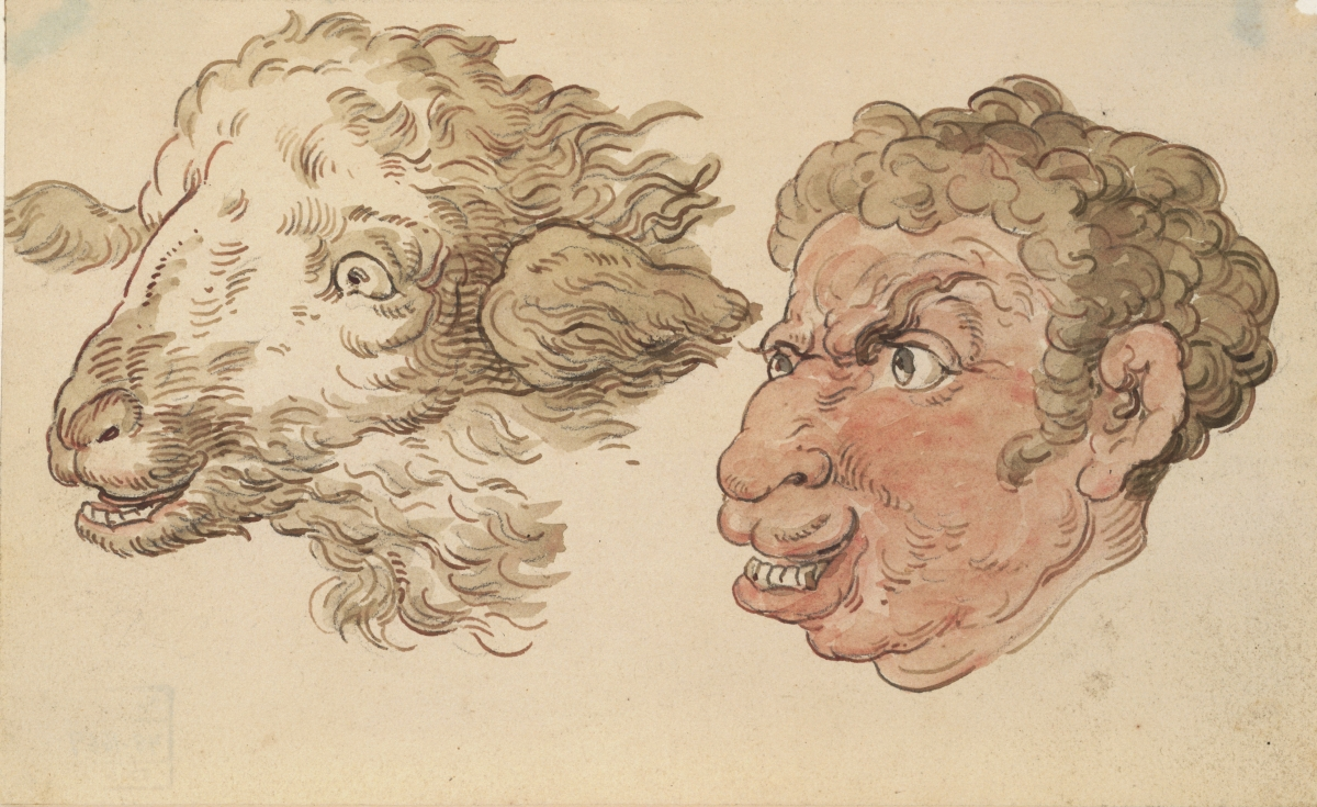 Thomas Rowlandson (British, 1756/57–1827), Man's Head and Sheep's Head. Pen and brown ink, brown wash with watercolor over graphite, 10.4 × 16.8 cm. Bequest of Dan Fellows Platt, Class of 1895