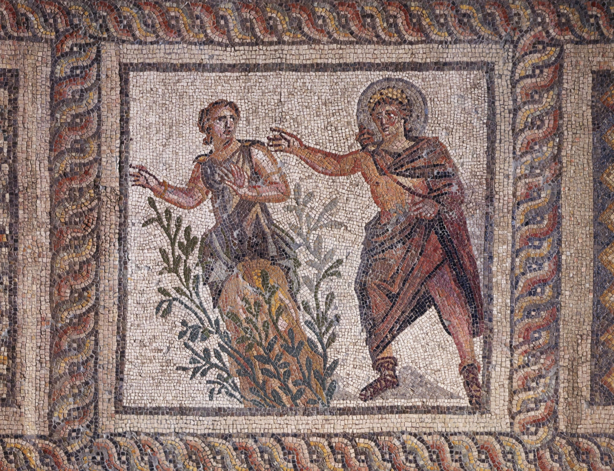 Roman, Antioch-on-the-Orontes, The House of Menander: Apollo and Daphne, late 3rd century a.d. Mosaic pavement, h. 190 cm, w. 592 cm. Gift of the Committee for the Excavation of Antioch to Princeton University. Photo: Bruce M. White