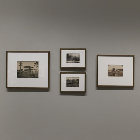 Photos from a faculty curated exhibition