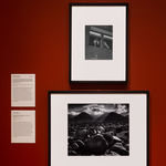 Photographs by Dorothea Lange and Ansel Adams on view in the American galleries